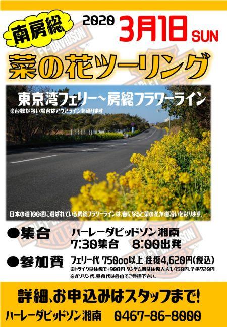 【3月1日】南房総・菜の花ツーリング開催のお知らせ