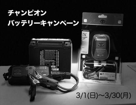 3月のチャンピオン サービスキャンペーン!!