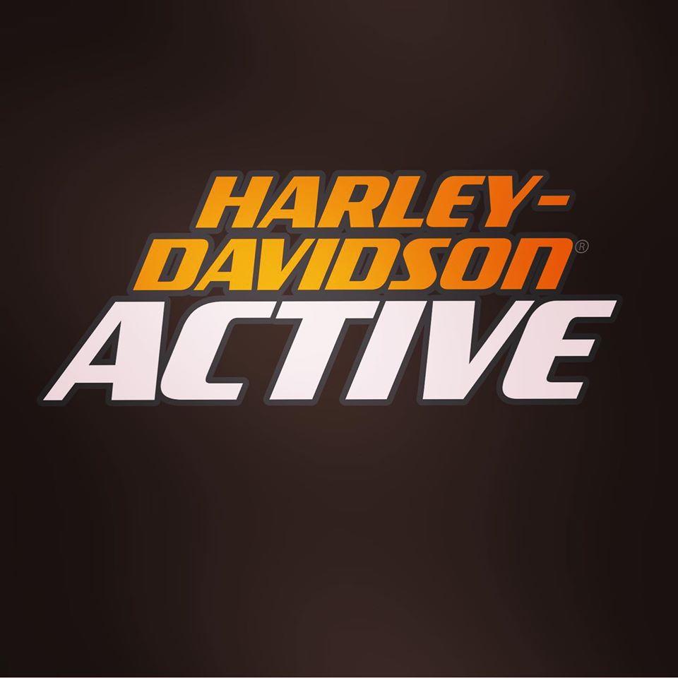 Harley-Davidson<sup>®</sup> アクティブ
