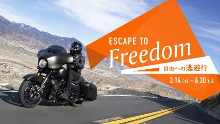 ESCAPE TO FREEDOM ~自由への逃避~ キャンペーン開始!