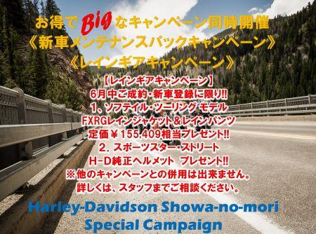 6月の新車ご成約キャンペーンのご紹介!